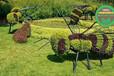 崇文五色草綠雕生產多圖