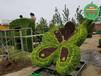 海寧五色草造型綠雕生產價格
