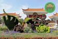 烏海五色草立體花壇怎么制作