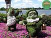 设计咨询:邵武绿色景观雕塑什么价格