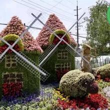 设计咨询:镇宁仿真绿雕植物墙生产安全可靠图片
