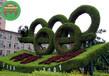 扬州高邮佛甲草绿雕多少钱?