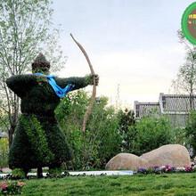 源头厂家:高邮仿真绿雕植物墙哪家好?图片