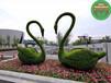 新余渝水立体花坛绿雕造型生产价格