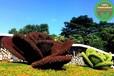 郴州?#24066;?#31435;体花坛绿雕造型制作公司