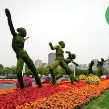 吕梁兴县湿地公园绿雕多少钱?图片