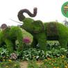 盐城东台草雕花雕绿雕市场价格