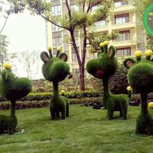 厂家信息:同德仿真动物绿雕在线咨询价格图片