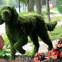 优质商铺:德格立体花坛立体绿化价格怎么样图片