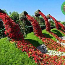 图片案例:雁峰园林植物绿雕设计公司图片
