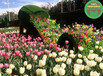 设计咨询:周宁仿真绿雕植物墙生产多图
