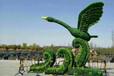 厦门湖里仿真植物绿雕厂家价格