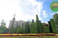 上海黄浦城市植物雕塑制作团队