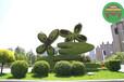 福建厦门湿地公园绿雕制作团队