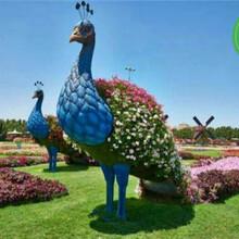 无锡锡山牡丹荷花绿雕生产价格图片