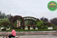 荊州沙市五色草綠雕制作公司