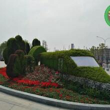 图片案例:盐池仿真绿雕植物墙市场价格图片
