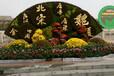 牡丹江东安仿真植物雕塑制作团队