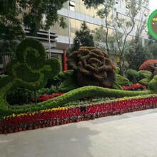 图片案例:乌拉特后旗仿真绿雕植物墙哪里卖?图片