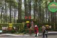 河北廊坊大型公园绿雕制作团队
