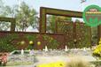 貨到付款:樺南仿真綠雕植物墻怎么養護