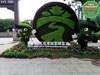 货到付款:五桂山园林植物绿雕定制哪家比较好欢迎咨询