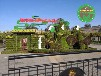 宁德寿宁湿地公园绿雕供货价格