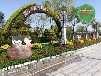 湖北武漢仿真植物園林綠雕制作團隊