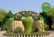 优质商铺:济宁绿色景观雕塑定做优质欢迎咨询