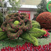 吕梁柳林城市景观绿雕多少钱?图片