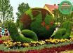 设计咨询:武城立体花坛立体绿化行情价格