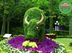 廠家咨詢:杭州園林植物綠雕行情走勢價格表