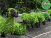 在线询价:巴彦仿真动物绿雕生产安全可靠