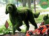 在線報價:新絳仿真動物綠雕廠商出售