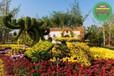 歡迎咨詢:富陽立體花壇綠雕廠家供應