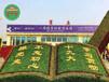 在线询价:建瓯仿真绿雕植物墙行情价格