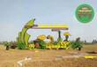 現場制作:湯旺河園林植物綠雕制作團隊工藝精湛