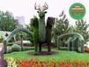 灌南立體花壇立體綠化制作方法