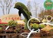 浪卡子仿真植物龍工藝品圖片