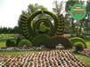长汀五色草造型植物绿雕高清大图