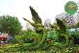 巴州園藝博覽會綠雕報價查詢