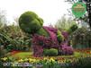 瑪沁人物動物綠雕圖片