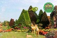 滿洲里五色草造型綠雕制作廠家