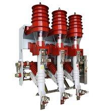 FN12-12高压负荷开关熔断器组合/手动/电动苏熔电气图片