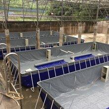 工厂化水产养鱼设备V-02