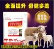 利斯特母羊饲料怀孕母羊专用饲料