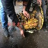 巴东县凯斯挖掘机维修三包签约热线