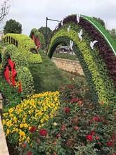 造型绿雕造型绿雕价格_造型绿雕厂家图片