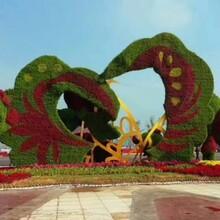 厂家定制仿真绿雕造型,真植物绿雕造型,创意景观雕塑造型图片