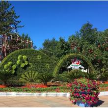 大型真植物景观雕塑造型厂家纯手工定制图片